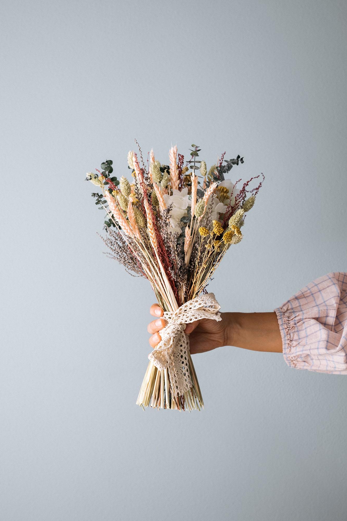 flores preservadas Brotavia