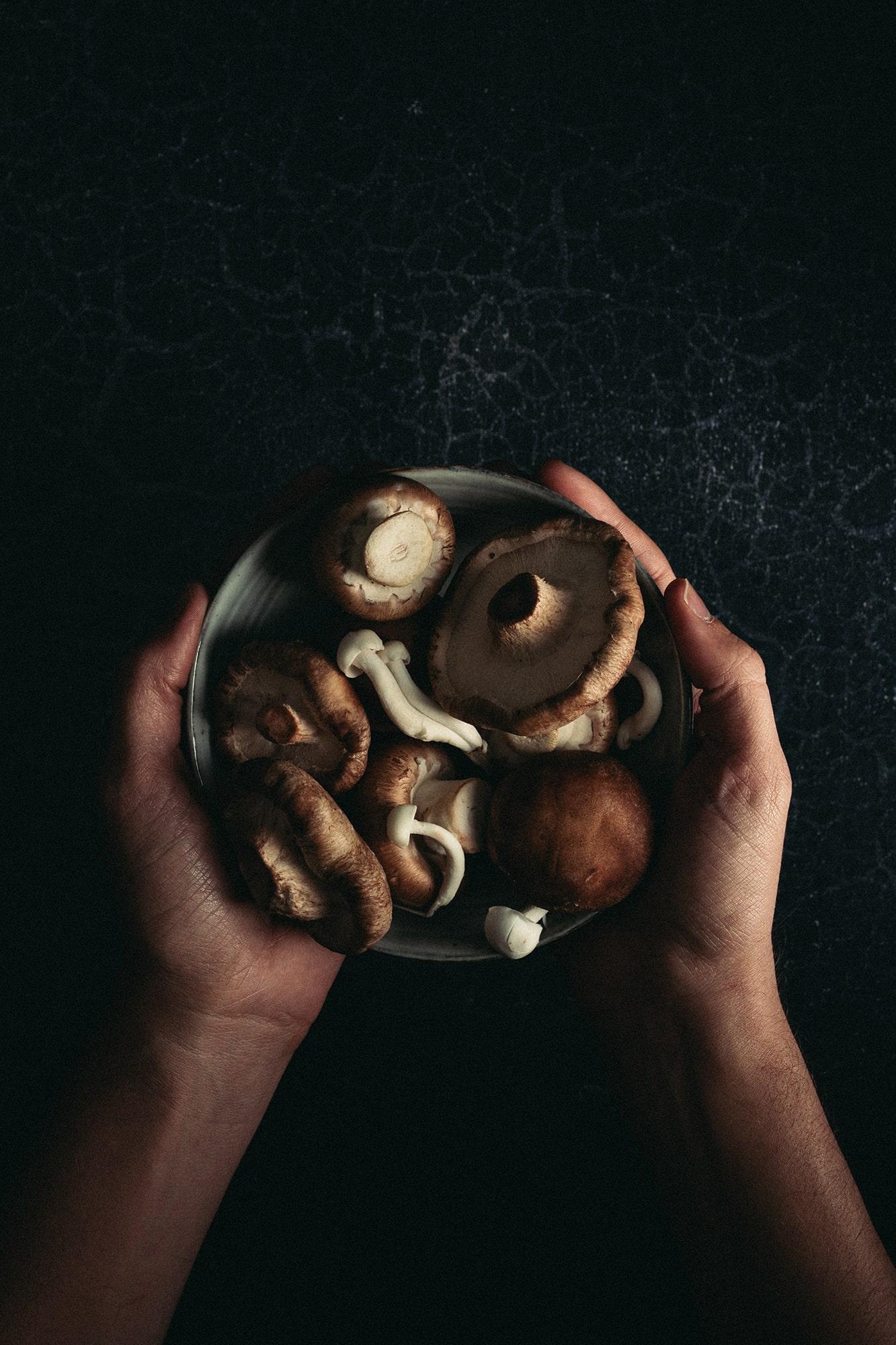 fotografía culinaria setas
