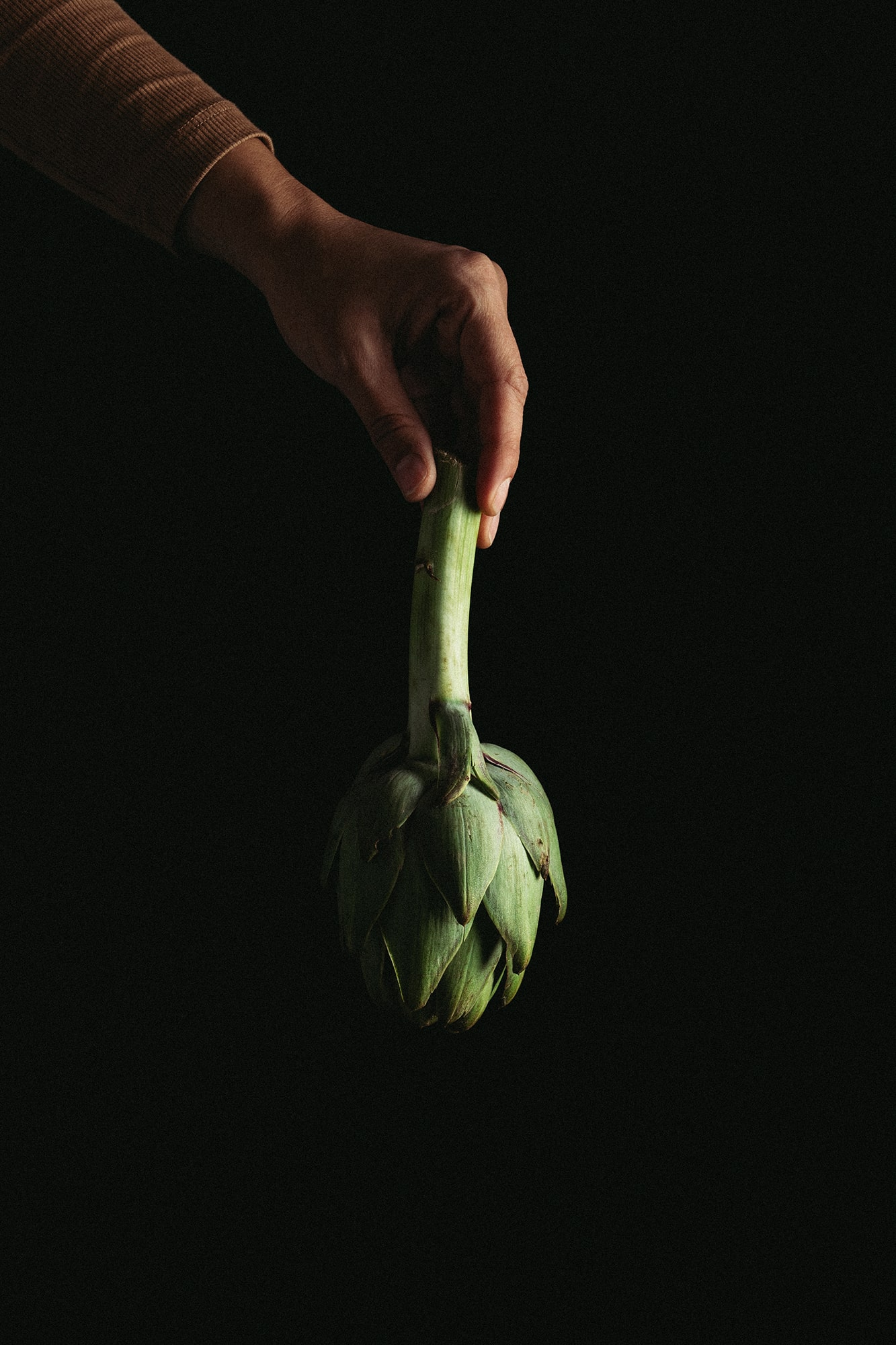 verduras huerta Murcia