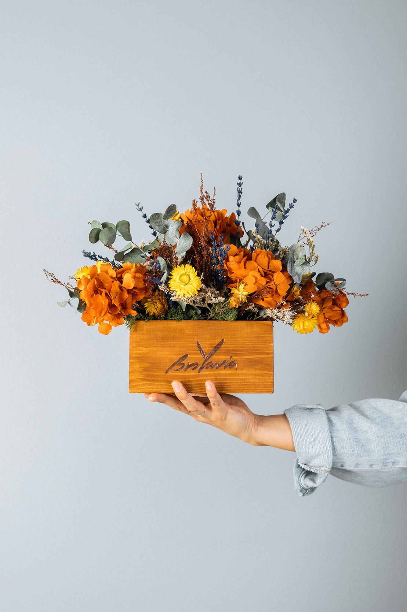Flores preservadas de Brotavia