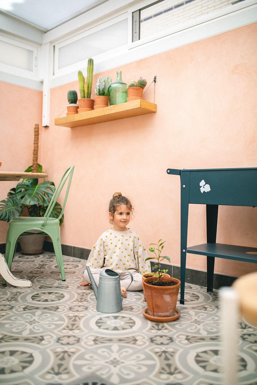 patio interior cactus